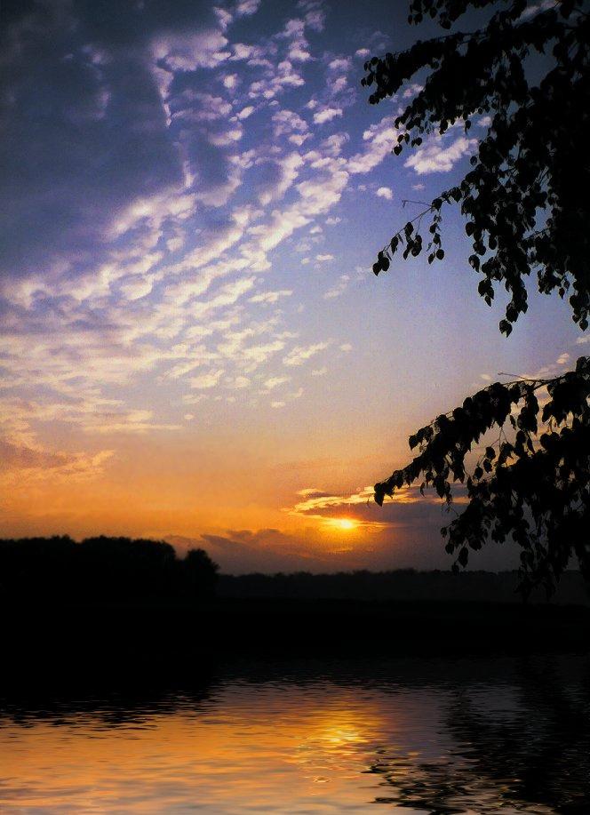 summer sunrise over water