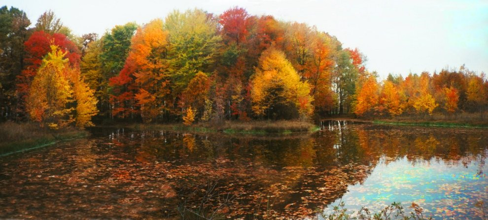 fall_pond_panorama