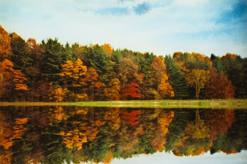 october trees reflected in lake