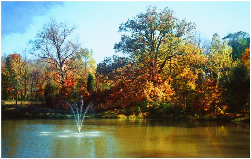pond with fountain, october scene
