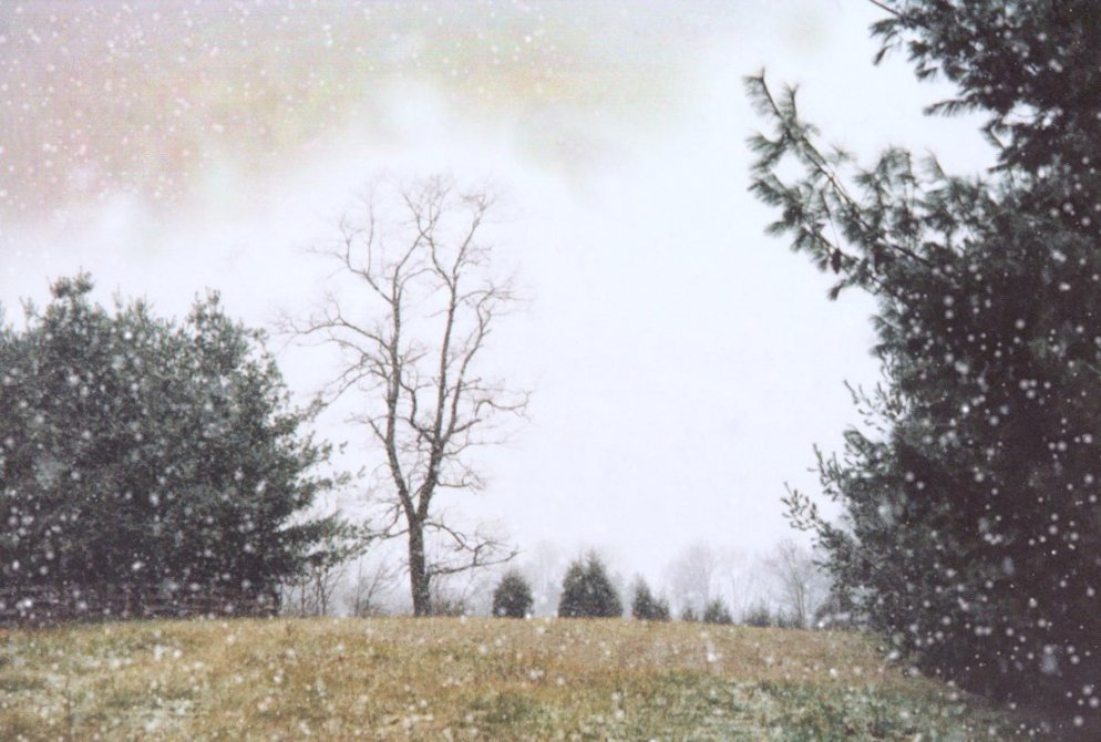 first snow in december, old scan