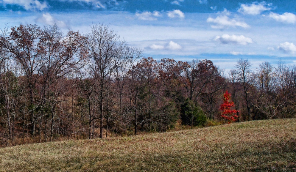 november landscape in southern indiana