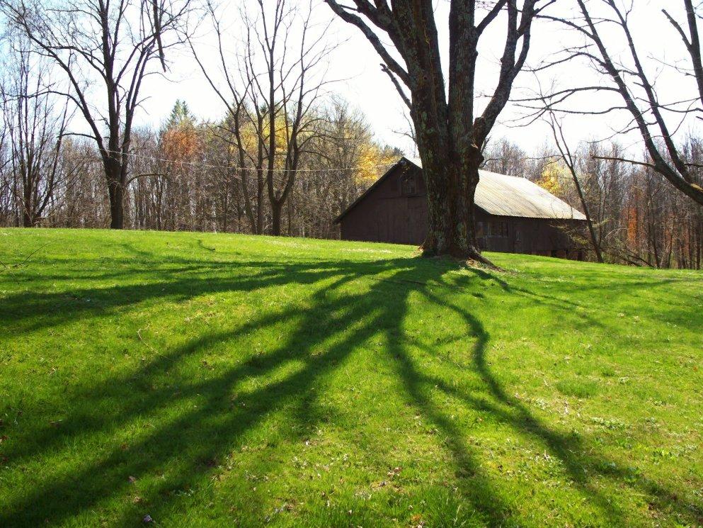 old barn pastoral