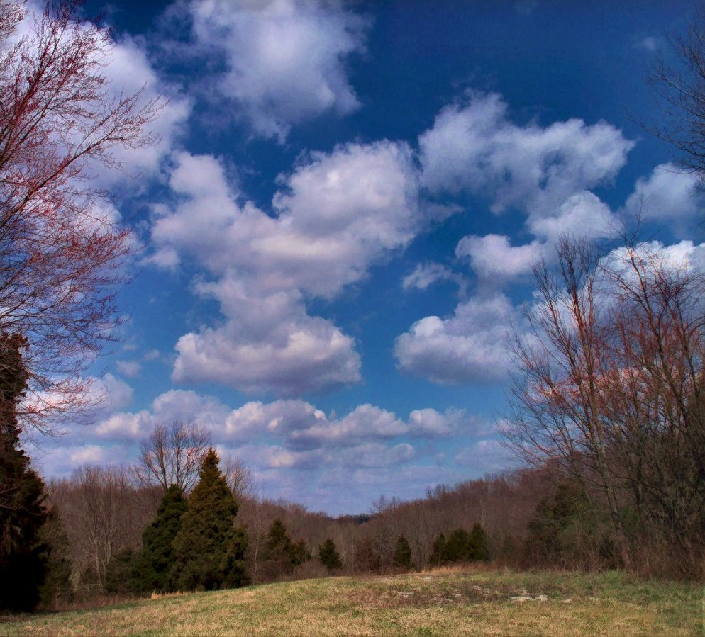march landscape and clouds in blue sky