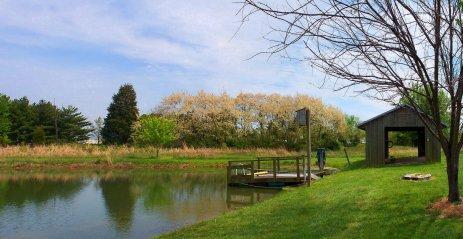 honey locust trees and lake panorama