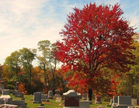 october cemetery visit