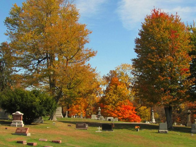 october scenery at local cemetery