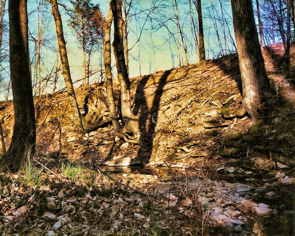 shadows on creek bank, early spring, south indiana