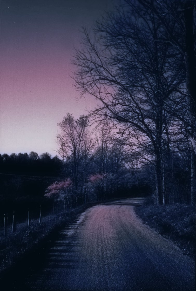 spring redbuds scene at bend of road, night