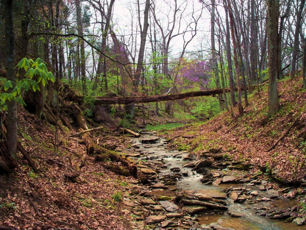secluded spring creek in indiana