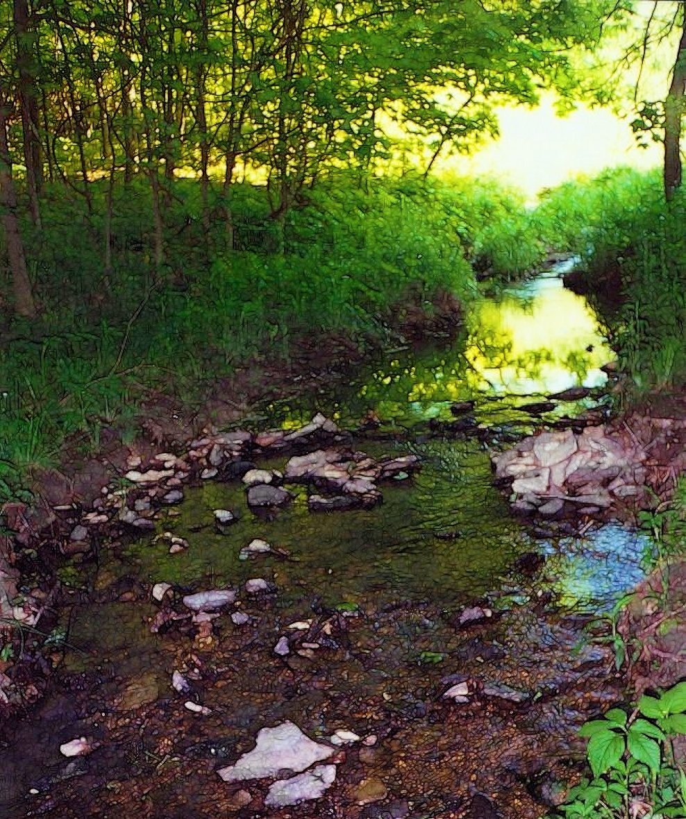 country creek in evening light