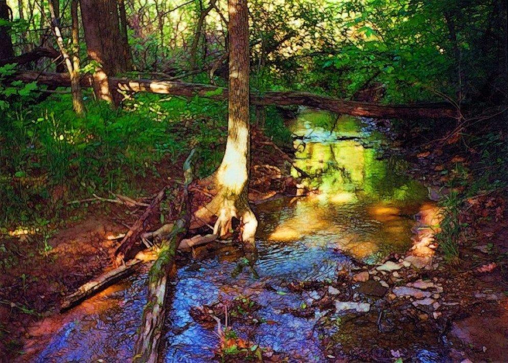 spring creek scene, south indiana