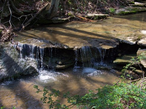 rapids trickling