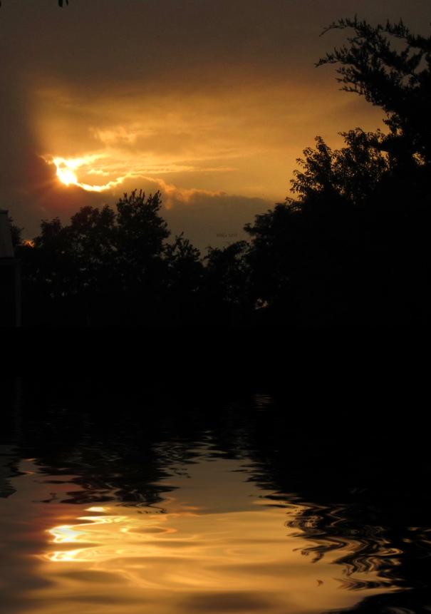 golden-sunset-w-flood